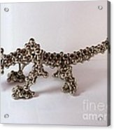 Magnetic Dragon Acrylic Print