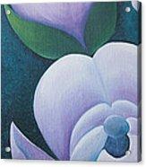 Magnificent Magnolia Buds Vertical Pink Flower Bud Closeup Textu Acrylic Print by Christina Rahm