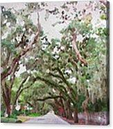 Magnolia Avenue Acrylic Print