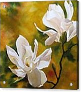Magnolia In Spring Acrylic Print