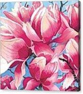 Magnolia Medley Acrylic Print