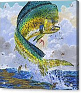 Mahi Hookup Off0020 Acrylic Print by Carey Chen