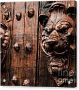 Mahogany Lion Heads Acrylic Print