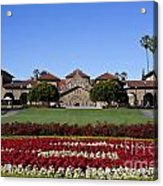 Main Quad Stanford California Acrylic Print