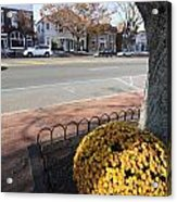 Main Street East Hampton New York Acrylic Print