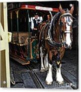Main Street Horse And Trolley Acrylic Print