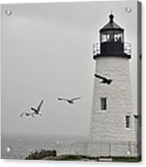 maine 11 Pemaquid Lighthouse Before Storm I Acrylic Print