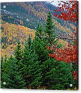 maine 57 Baxter State Park Loop Road Fall Foliage Acrylic Print