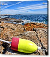 Maine Coast Acrylic Print by Olivier Le Queinec