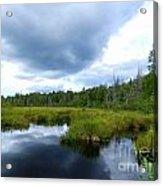 Maine Pond Acrylic Print