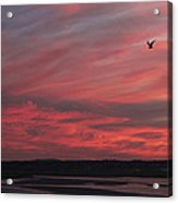 Maine Sunset Acrylic Print
