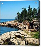 Maine's Rocky Coastline Acrylic Print