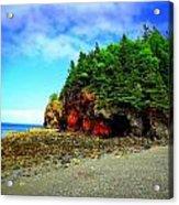 Maine's Rugged Shore Acrylic Print