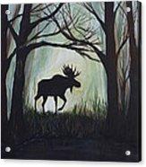 Majestic Bull Moose Acrylic Print by Leslie Allen