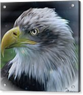 Majestic Eagle Of The Usa - Featured In Feathers And Beaks-comfortable Art And Nature Groups Acrylic Print