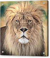 Majestic King Acrylic Print by Everet Regal