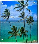 Majestic Palm Trees Acrylic Print
