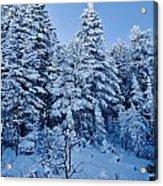 Majestic Winter Wonderland Acrylic Print