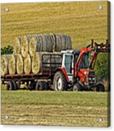 Make Hay When Sun Shines Acrylic Print