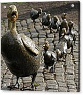 Make Way For Ducklings Acrylic Print by Juergen Roth
