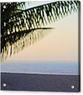 Make Your Own Paradise Acrylic Print