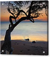Makena Breeze Acrylic Print