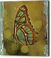 Malachite - Flying Jewel Acrylic Print