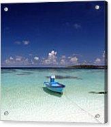 Maldives 09 Acrylic Print by Giorgio Darrigo