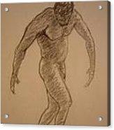 Male Croquis Acrylic Print