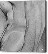 Male Nude 2 Acrylic Print