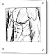 Male Torso #1 Acrylic Print