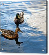 Mallards Lake Hopatcong Nj Acrylic Print