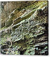 Mammoth Cave 2 Acrylic Print