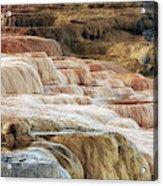 Mammoth Hot Springs Terracaes Acrylic Print