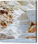 Mammoth Hot Springs Up Close Acrylic Print