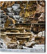 Mammoth Hot Springs - Yellowstone Acrylic Print