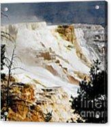 Mammoth Springs Yellowstone Steam Rising Acrylic Print
