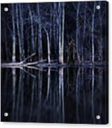 Man In Woods By River Acrylic Print