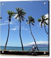 Man Riding Bicycle Beside Palm Trees Acrylic Print