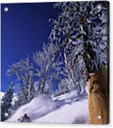 Man Skiing Through Trees In Fresh Acrylic Print