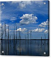 Manasquan Reservoir Panorama Acrylic Print