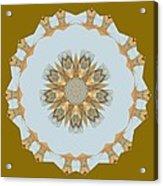Mandala 014-8 Acrylic Print
