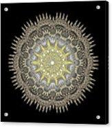 Mandala 1 Acrylic Print