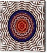 Mandala 10 Acrylic Print by Terry Reynoldson
