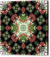 Mandala 113 Acrylic Print