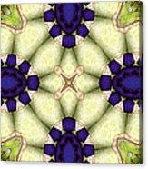 Mandala 115 Acrylic Print