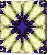 Mandala 118 Acrylic Print