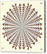 Mandala 12 Acrylic Print