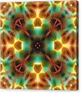 Mandala 133 Acrylic Print