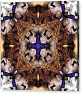 Mandala 17 Acrylic Print